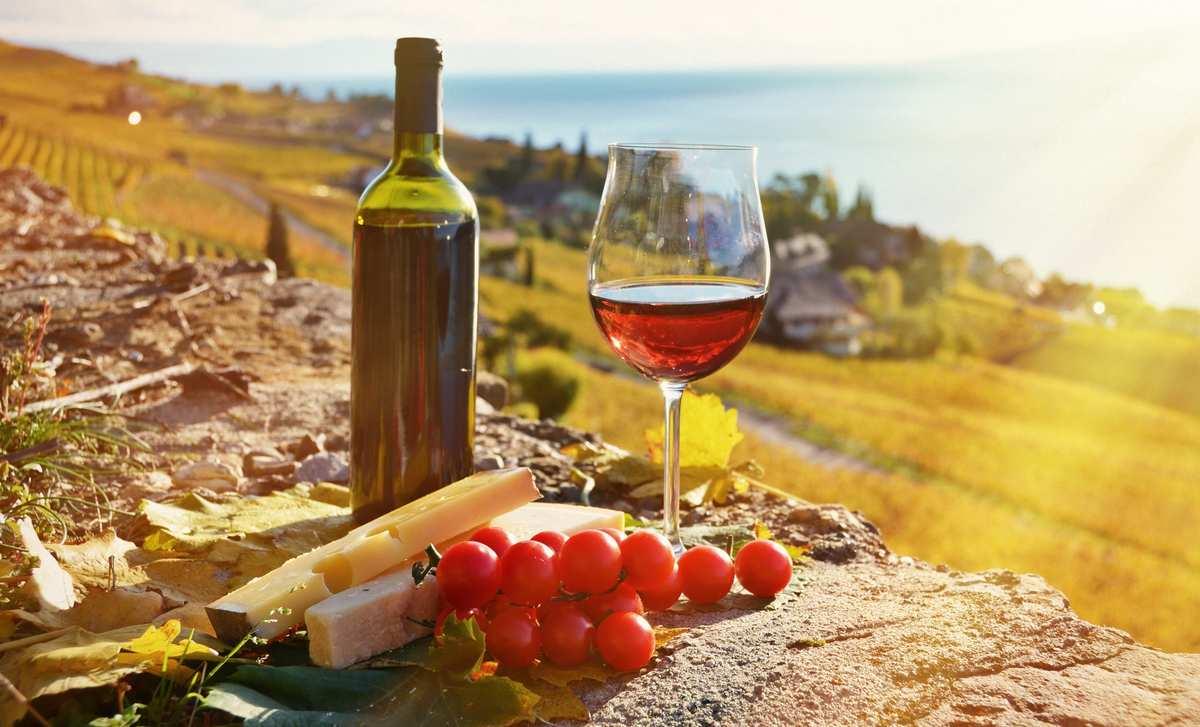 Дегустация вин Грузии